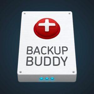 iThemes BackupBuddy