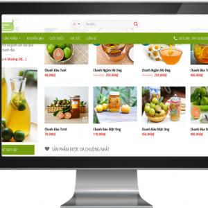Giao diện Website bán hàng Trái cây
