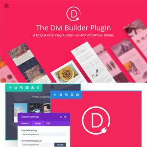 Elegant Themes – Divi Builder WordPress Plugin